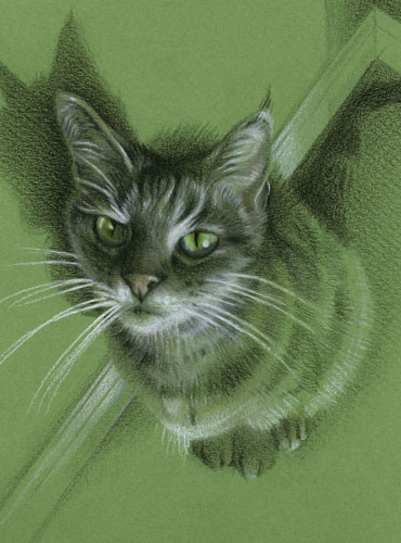Menkara on Green - Cat Portrait